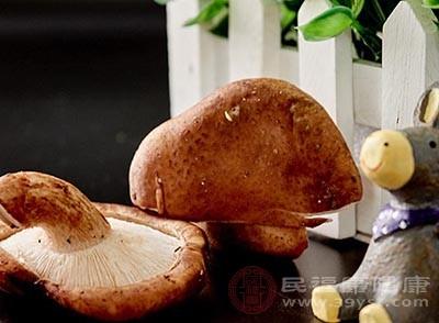 香菇中含有丰富的矿物质