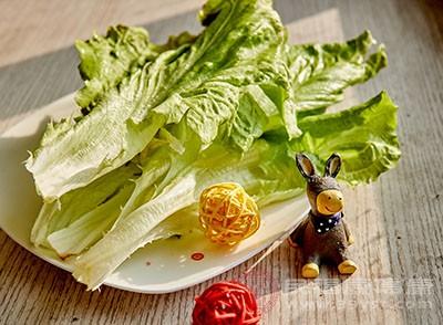 想要减肥的朋友在平时可以多吃一点生菜
