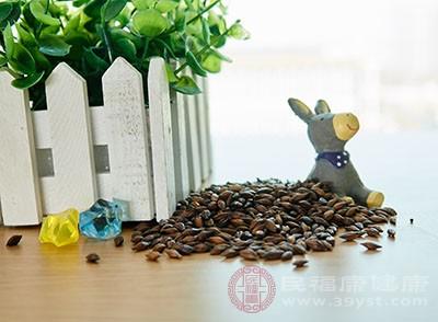 大麦茶的功效 多喝种茶可以治疗心神不宁