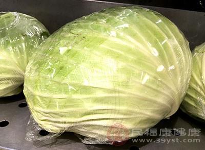 卷心菜含有丰富的维生素