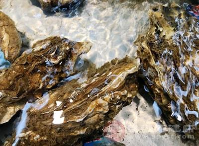 牡蛎中含有很多的微量元素