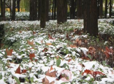 冬至的習俗 這一天有拜天祭祖的習俗