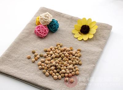 黄豆的功效 食用它竟可以预防乳腺癌