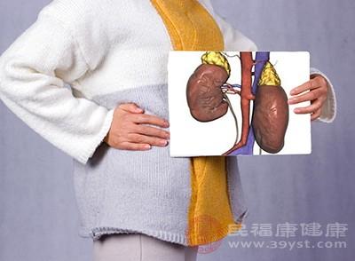 病肾病发生后,肾功能下降