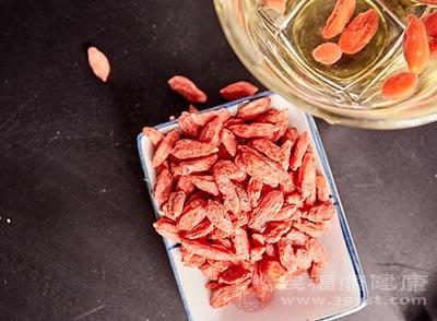 枸杞的功效 吃这种食物可以降低血糖血脂
