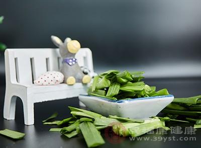 韭菜含钙、磷、铁、糖和蛋白