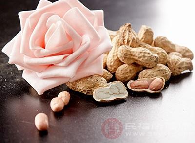 花生性平味甘,具有健脾和胃、潤肺止咳的功效