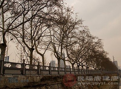 """吃""""消寒糕""""的习俗在北京由来已久"""