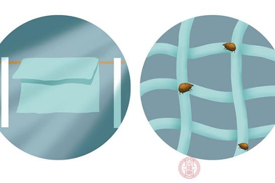我們可以使用針對螨蟲的洗護用品,同時增加洗臉的次數