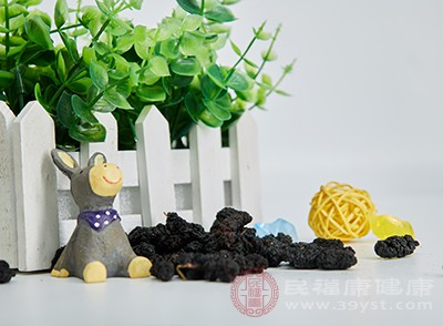 桑葚干是目前水果及其制品中含天然铁丰富的食物