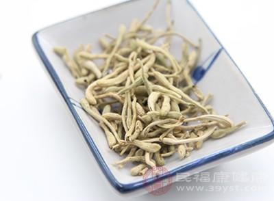 金银花有透热达表、对于治疗口渴咽喉痛、温病初期身热