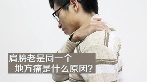 肩膀老是同一个地方痛是什么原因