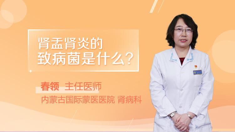 肾盂肾炎的致病菌是什么