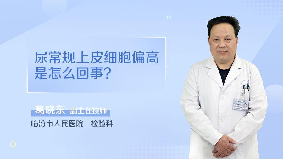 尿常规上皮细胞偏高是怎么回事