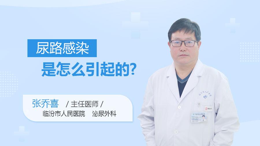 尿路感染是怎么引起的