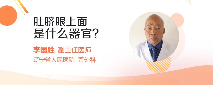 肚脐眼上面是什么器官?