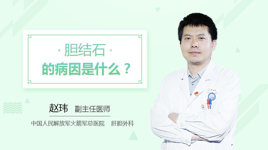 胆结石的病因是什么