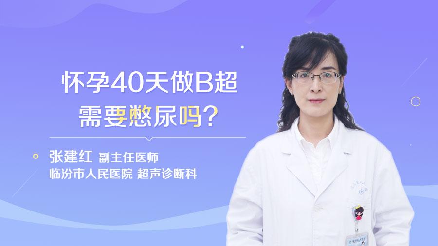 怀孕40天做B超需要憋尿吗