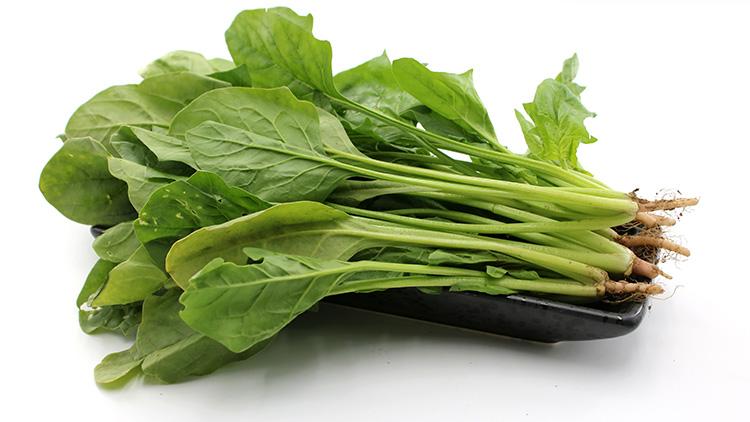 菠菜不能和什么一起吃