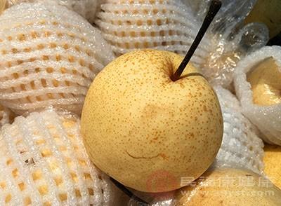 痔疮吃什么 常吃梨子能缓解这个病