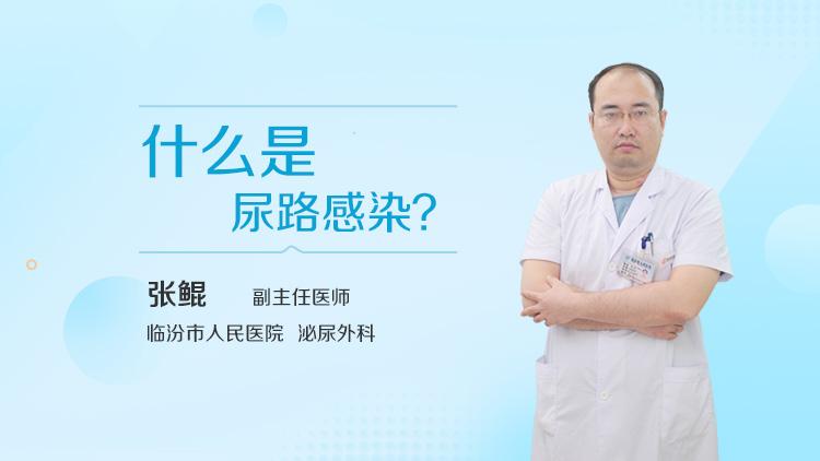 什么是尿路感染