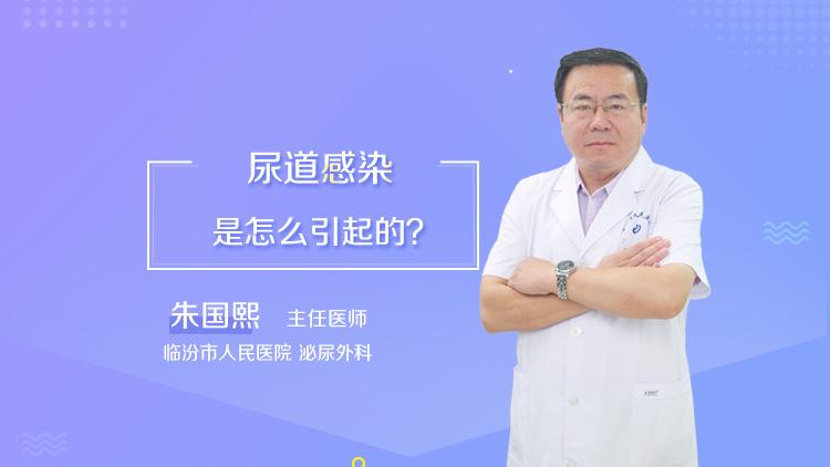 尿道感染是怎么引起的