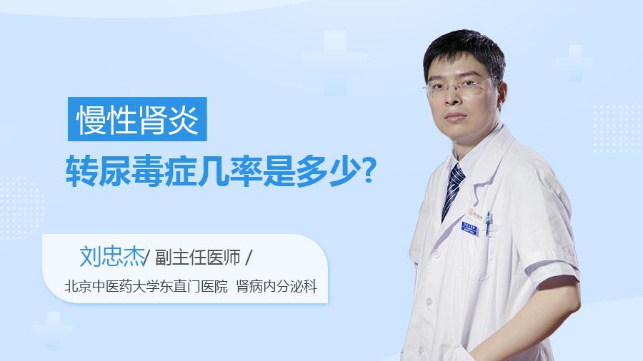 慢性肾炎转尿毒症几率是多少