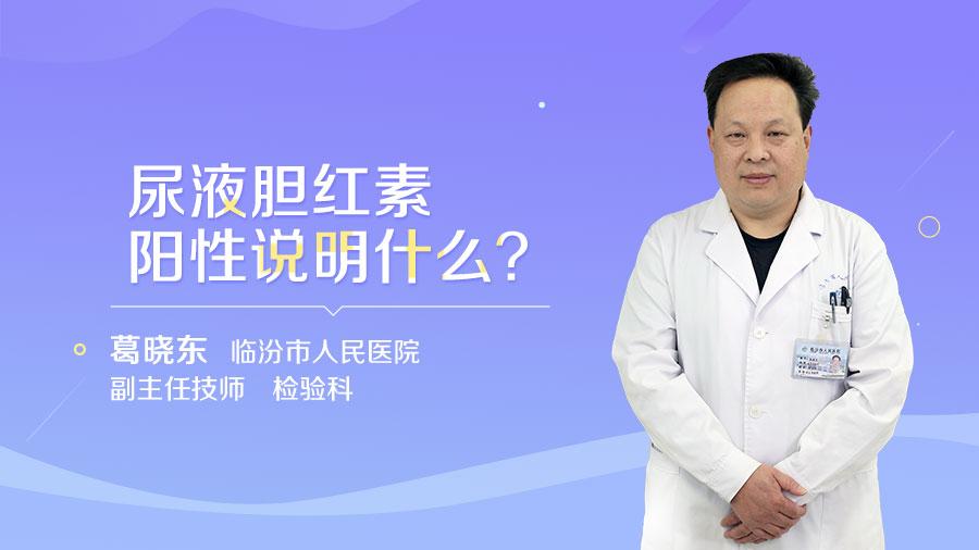 尿液胆红素阳性说明什么