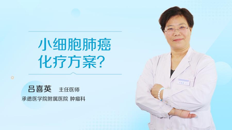 小细胞肺癌化疗方案