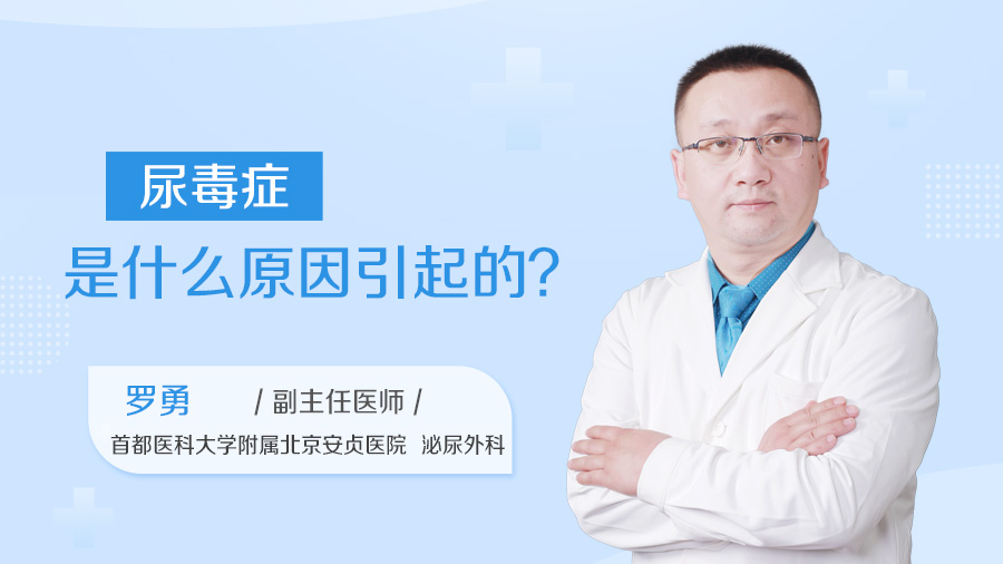 尿毒症是什么原因引起的